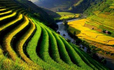 Đến thăm Sapa hùng vĩ và thơ mộng trong mùa lúa chín