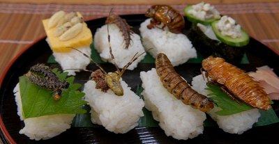 7 loại côn trùng có thể phải ăn trong tương lai