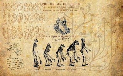 Học thuyết Darwin – Một chủ đề cấm