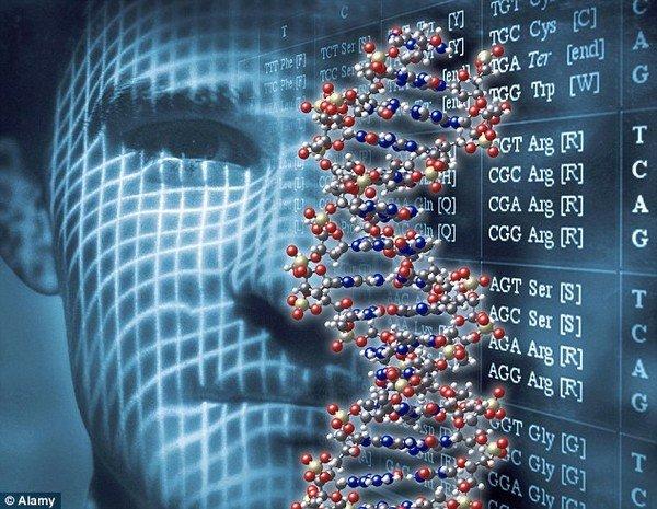 CRISPR công cụ có khả năng sửa đổi bộ gen người