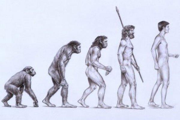 Thuyết tiến hóa: Lời giải thích trọn vẹn về nguồn gốc con người?