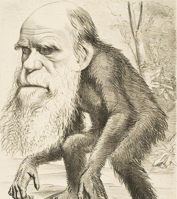 Vì sao khoa học hiện đại không còn xem trọng thuyết tiến hóa của Darwin?
