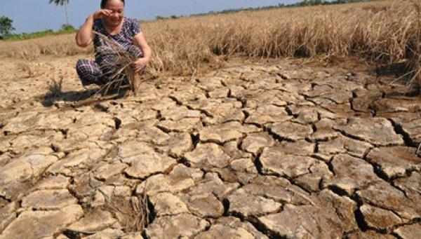 Vấn đề sông Mê Kông, không thể trông chờ Trung Quốc rủ lòng thương