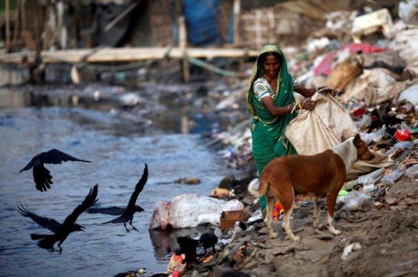 WHO: Báo động 25% số người chết là do ô nhiễm môi trường