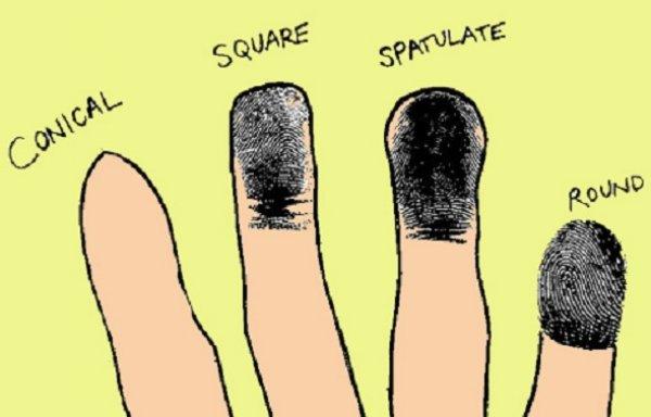 Hình dạng đầu ngón tay tiết lộ điều gì về tính cách của bạn?