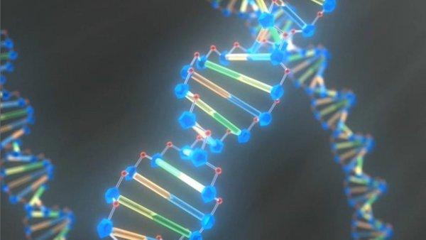 """Mã di truyền đã ngừng """"tiến hóa"""" cách đây 3 tỷ năm"""