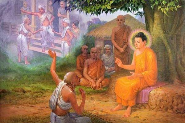 Đức Phật nhìn thấy nguyên do vì sao cả dòng họ của mình bị giết hại