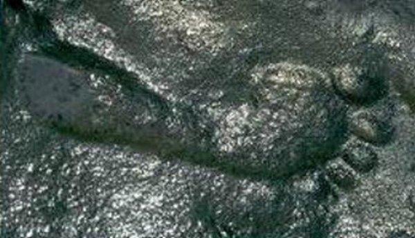 Bí ẩn dấu chân người 290 triệu năm tuổi khoa học chưa lý giải được
