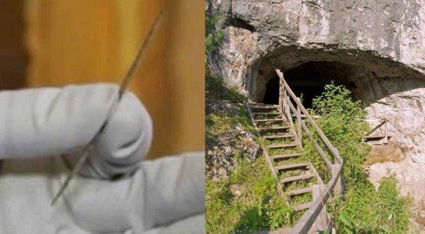 Cây kim 50.000 năm tuổi ở Nga thêm nghi vấn về nguồn gốc loài người