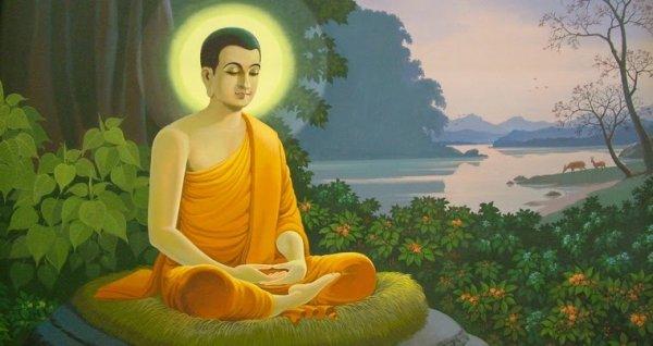 Chuyện cổ Phật gia: Nỗi thương xót của Đức Phật Thích Ca