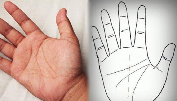 Xem tướng bàn tay của những người có số mệnh vất vả bôn ba
