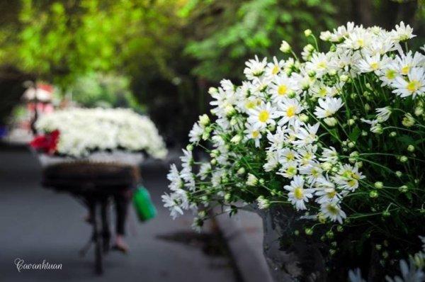 Cảnh đẹp nên thơ của Hà Nội những ngày vào đông