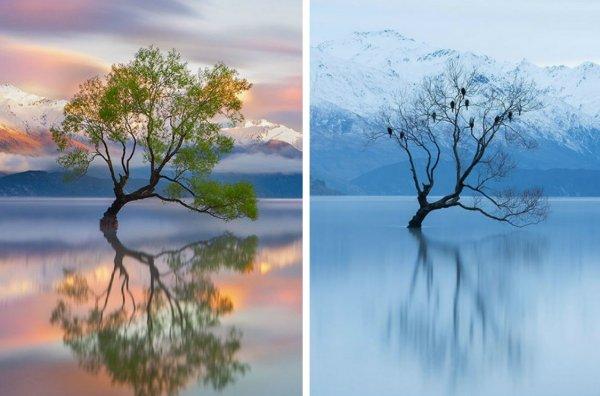 Sự khác biệt của mùa đông