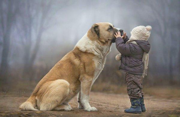 Bạn có biết rằng, động vật cũng có 'công năng đặc dị' đoán biết trước tương lai