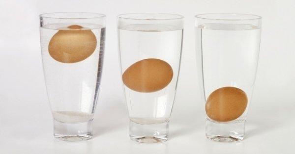 Chỉ cần 5 giây biết trứng hỏng hay trứng tươi mới