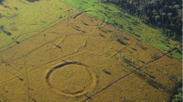 Phát hiện hàng trăm vòng tròn bí ẩn giữa rừng Amazon