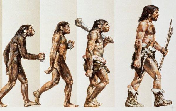 Phát hiện hóa thạch 1,6 tỷ năm có thể thay đổi lịch sử sự sống trên Trái Đất