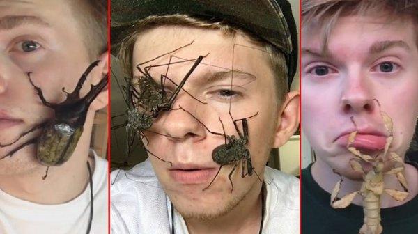 Anh chàng nổi tiếng với sở thích cho côn trùng lên mặt