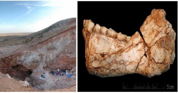 Hộp sọ người hiện đại 300.000 năm tuổi đặt lại câu hỏi về lịch sửloài người