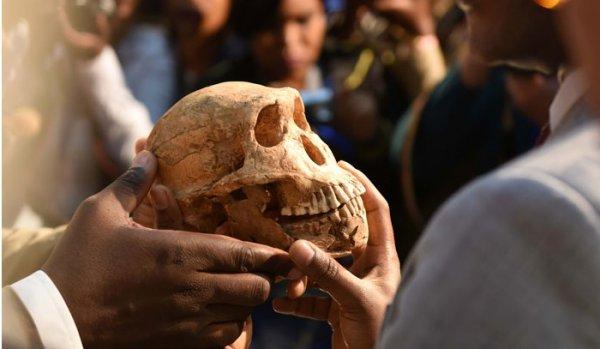 Hóa thạch niên đại 335.000 tuổi đảo lộn thuyết tiến hóa về loài người