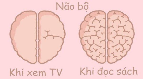 Thói quen hằng ngày của chúng ta ảnh hưởng đến não bộ như thế nào?