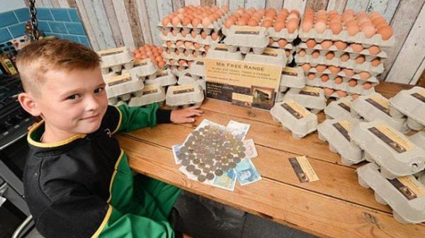 Cậu bé 8 tuổi khởi nghiệp từ việc giao trứng: Cháu sẽ thành triệu phú!