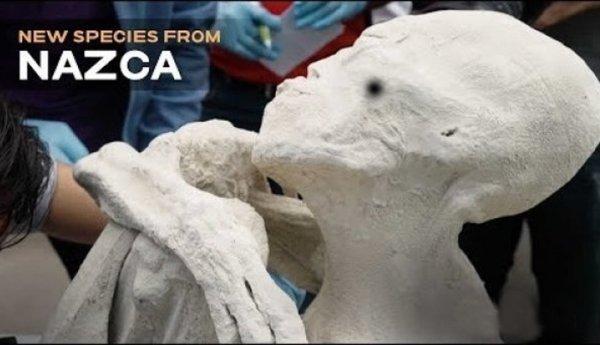 Kết quả xét nghiệm DNA xác ướp sinh vật lạ ở Peru: 100% là con người