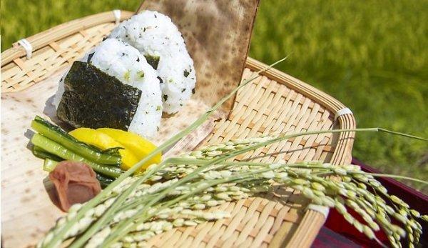 Lễ Tạ ơn mùa màng – Nét văn hóa truyền thống đặc sắc của Nhật Bản