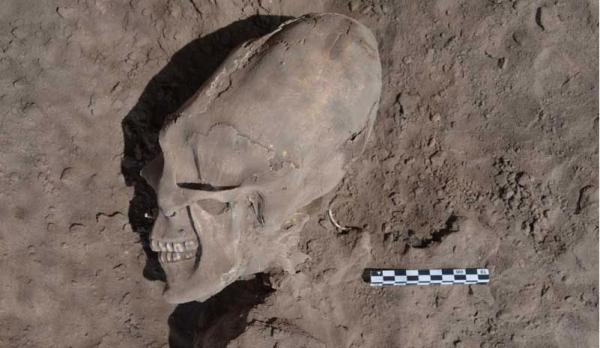 Phát hiện 13 hộp sọ dài như người ngoài hành tinh ở Mexico