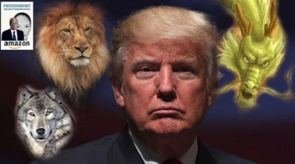 Nhân tướng học: Nếu không bị ám sát, ông Trump sẽ là tổng thống thành công thứ nhì của nước Mỹ
