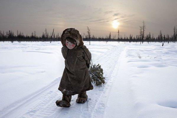 Những bức ảnh mang thông điệp ý nghĩa về con người và thiên nhiên