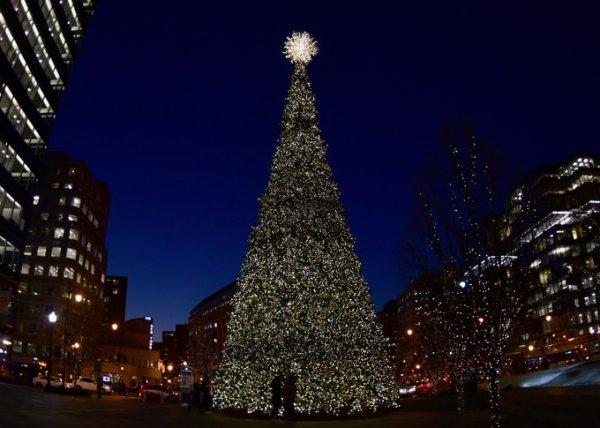 Thế giới đón đêm Giáng sinh an lành