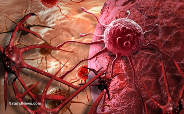 Nghiên cứu: Cơ chế 'lách luật' của tế bào ung thư cũng hệt như lối sống con người