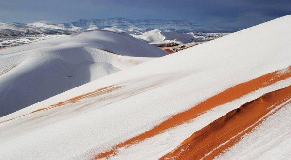 Tuyết rơi phủ trắng nền cát sa mạc Sahara