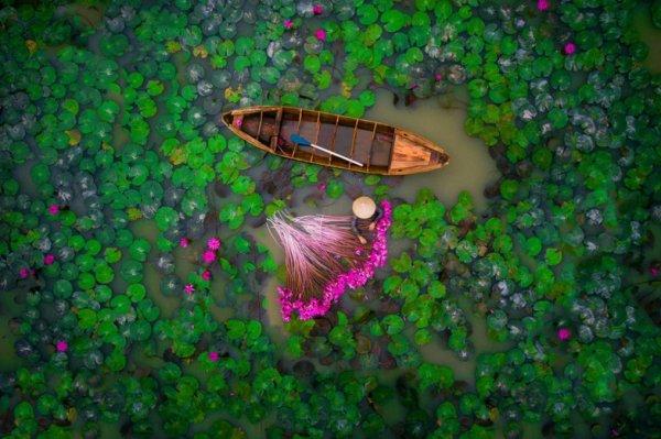 Bộ ảnh chụp trên không được bình chọn đẹp nhất năm, Việt nam có 2 tác phẩm