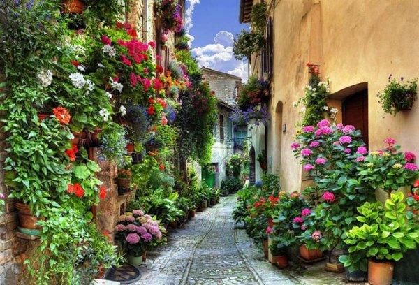 Những ngôi làng châu Âu phủ hoa tươi đẹp như cổ tích