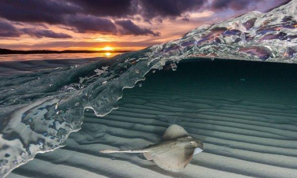 National Geographic: Hình ảnh thiên nhiên đẹp nhất tháng 1