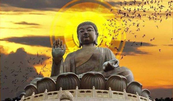 Hủy hoại kinh sách nhà Phật bị quả báo chết sớm, si khờ