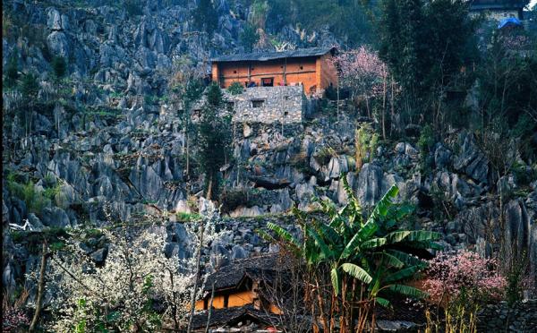 Khung cảnh tuyệt đẹp của mùa xuân tại cao nguyên đá Hà Giang