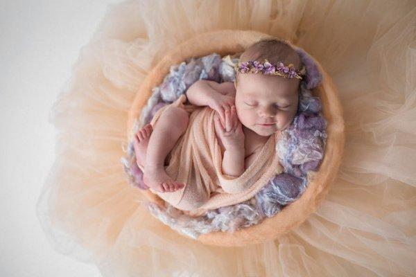 Bộ ảnh bé sơ sinh cuộn tròn trong những vòng tròn Mạn đà la