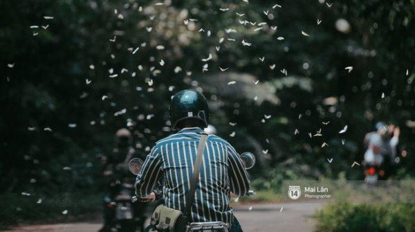 Cảnh tượng rừng Cúc Phương đẹp mơ màng trong mùa bươm bướm