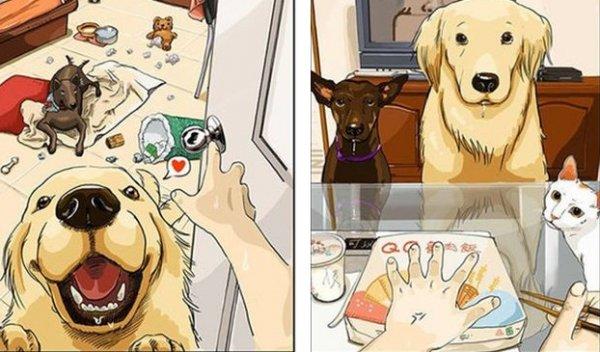 """Cuộc sống trước và sau khi nuôi cái bọn """" đáng ghét"""" này"""