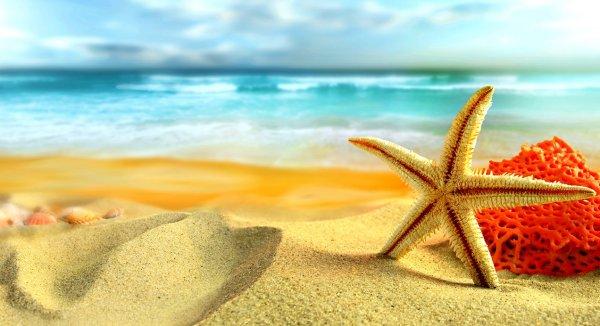 Dưỡng sinh trong mùa hè đặc biệt phải chú ý đến dương khí
