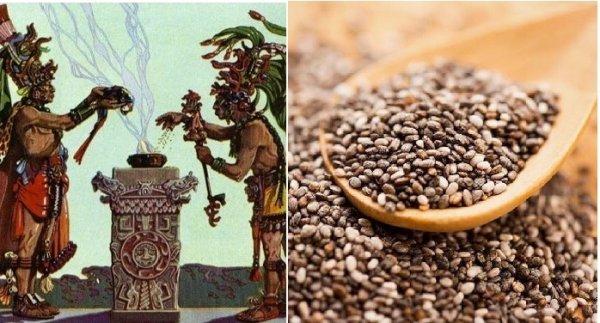 Bí quyết sống khỏe: Người Maya quý trọng loại hạt bé li ti này hơn cả vàng