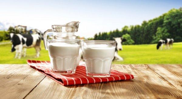 5 sự thật huyền thoại mà ngành công nghiệp sữa không muốn bất cứ ai biết đến