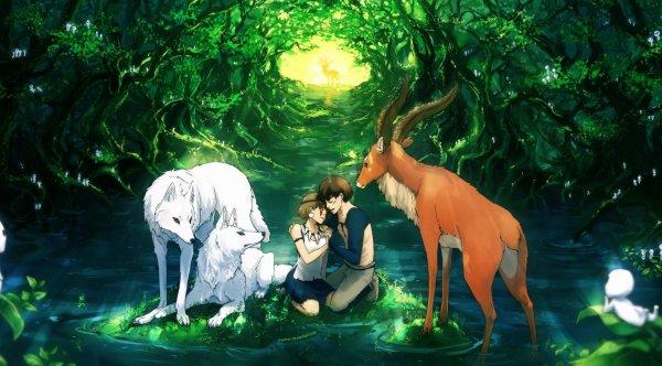 """Khu rừng cổ xưa truyền cảm hứng cho """"Công chúa Mononoke"""" có gì đặc biệt?"""