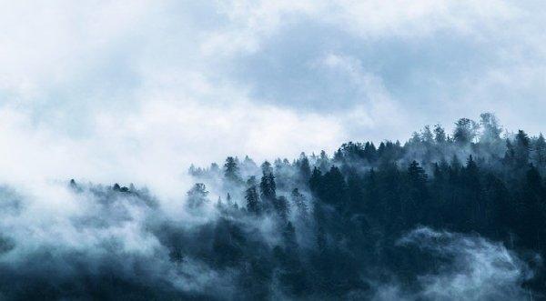Thế ngoại cao nhân chữa bệnh thần kỳ (P.1): Đại nạn từ trên trời giáng xuống