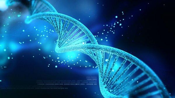 """Nghiên cứu mới khẳng định bạn bè có sự tương đồng về di truyền, đây phải chăng là chữ """"duyên""""?"""