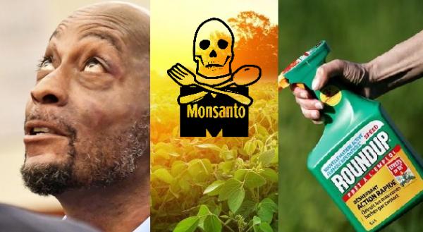 Monsanto bồi thường gần 300 triệu USD cho người bị ung thư vì thuốc diệt cỏ Roundup