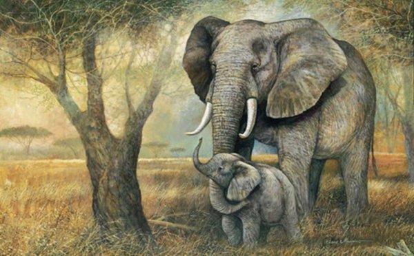 Động vật khôn ngoan và tình cảm được ghi lại trong sách cổ